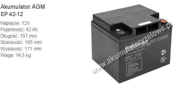 Akumulator 12V 42Ah EUROPOWER EP 42-12 197x165x171mm 14.3kg 12 42 AGM.